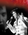 Elvis - Das Musical in Stuttgart -- Tickets sichern, wird bestimmt voll !!